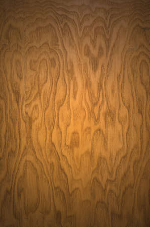 textured wood background with a gradient light Stock Photo - 9727536