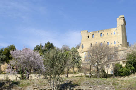 ruined castle of Chateauneuf du Pape in Provence in spring, France