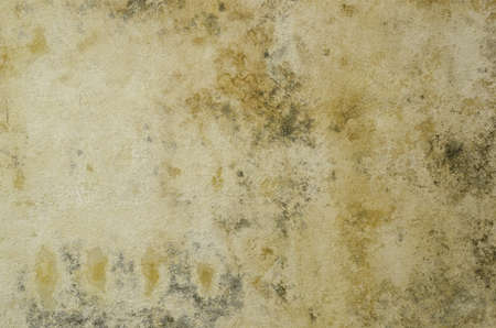 dirty and wet wall Stock Photo - 14971167