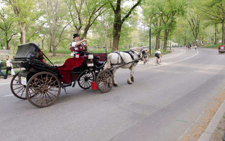 New York City, USA - May 5, 2015: visit to central park by horse-drawn carriage