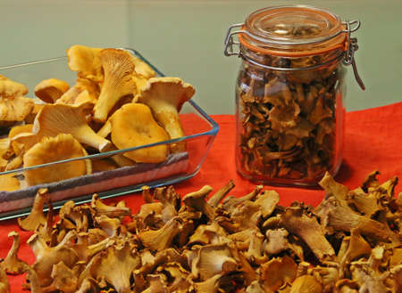 Fresh and dried Chanterelles (Cantharellus cibarius), dehydrated chantarelles. Preserved mushrooms.