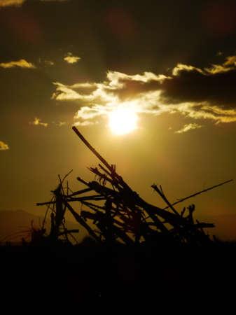 soleil: Coucher de soleil sur tas de bois