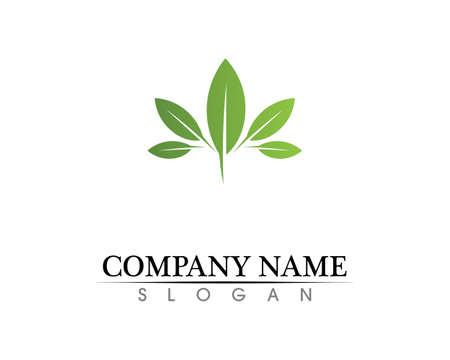 Eco, leaf, athletic, balance, body, brand, care, club, creative, 免版税图像 - 156866538