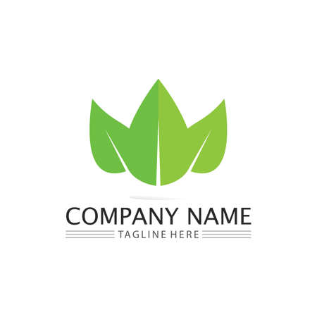 Tree leaf vector and green logo design friendly concept Logo