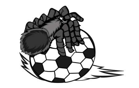 Tarantula Creeping on Ball Vector Illustration Illustration