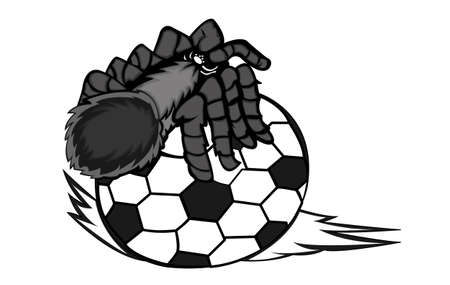 tarantula: Tarantula Creeping on Ball Vector Illustration Illustration