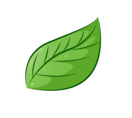 aesthetic: Aesthetic leaf Illustration