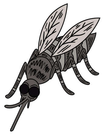 parasitic: Wild Mosquito illustration