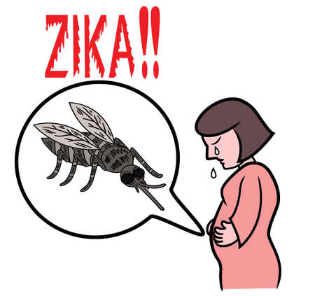 Illustration of warning of zika virus attacking pregnant mother through mosquito bites  Illustration