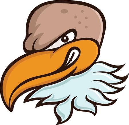 Bald Eagle or Vulture Head Cartoon Illustration Isolated on White