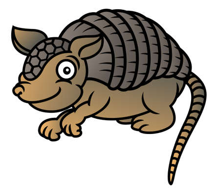 Armadillo Cartoon Illustration Illustration