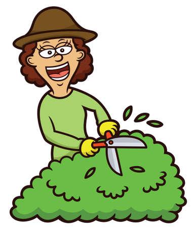 Woman Gardening Cartoon Illustration Illustration