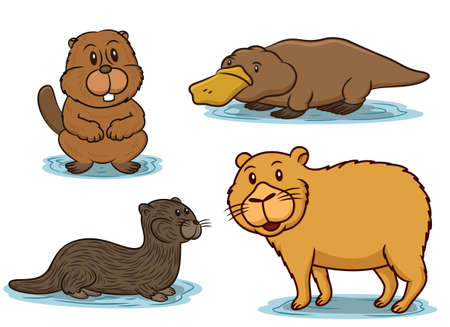 nutria caricatura: Semiaquatic Animals Cartoon