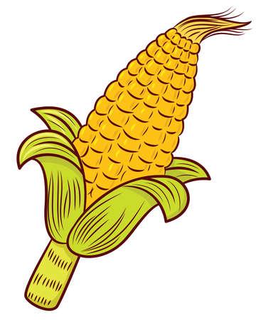 Corn Illustration Isolated on White Ilustração