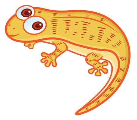nocturnal animal: House Lizard Cartoon Illustration