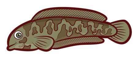 predatory: Snakehead Fish Cartoon Illustration
