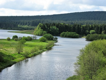 Edge of Kielder Water reservoir backed by hills and forest, Northumberland, England