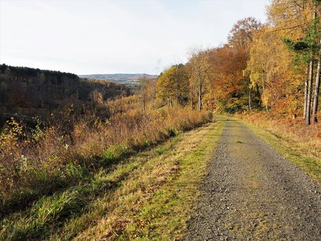 Track beside trees with autumn foliage and a view of distant hills at Gibside near Newcastle, UK Stock Photo
