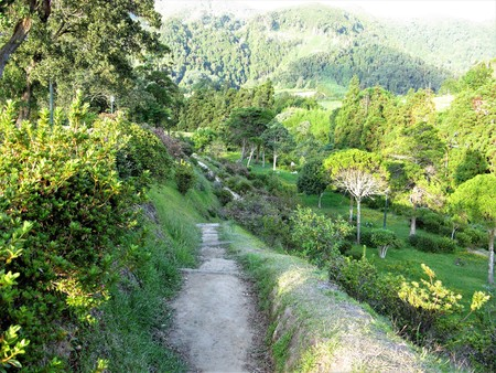 Footpath down to Furnas with green vegetation, Sao Miguel, The Azores Stock Photo