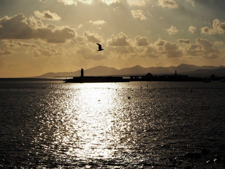 Twilight view over the ocean from Arrecife, Lanzarote, with a seagull and mountain background Stock Photo