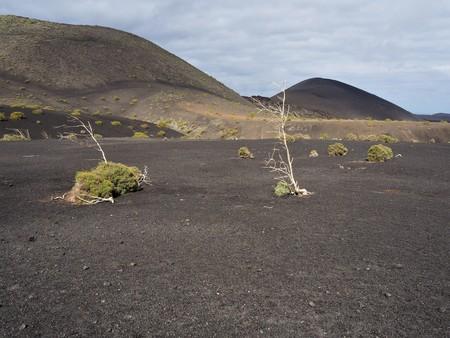 Bleak volcanic landscape in the Timanfaya National Park, Lanzarote