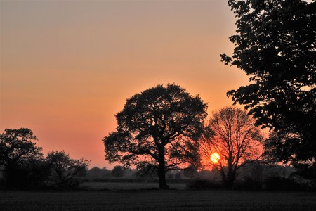 Sun setting behind silhouetted trees with a clear orange sky near York, England