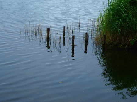 Wooden posts reflected in the water at the edge of a lake Stock Photo
