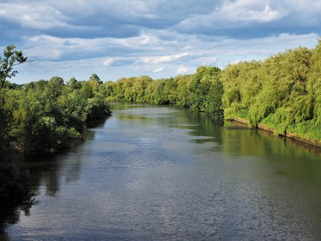 River Ouse lined with green trees in summer near York, England
