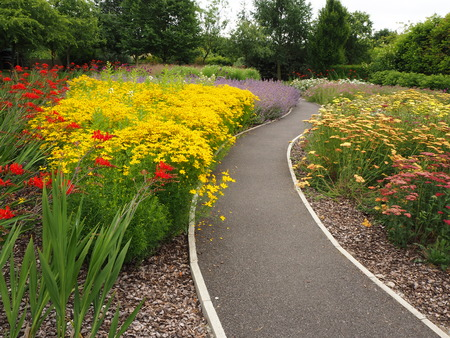 Path winding between colourful flower beds in a garden in summer