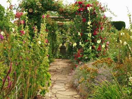 Paved path through flower beds and a pergola in a summer garden