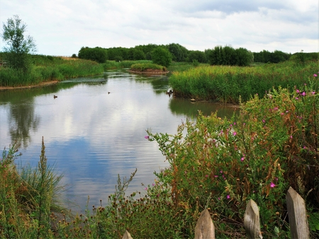 Lake in Waters Edge Country Park on the Humber Estuary, Lincolnshire, England