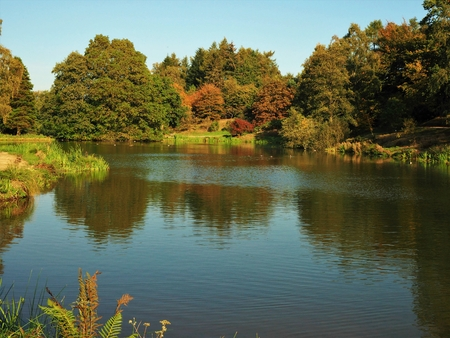 Lake in the Yorkshire Arboretum, England, surrounded by trees with autumn foliage