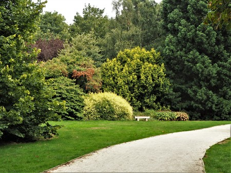 Path through a garden with colourful trees and bushes