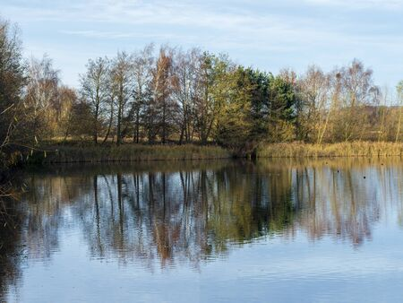 Winter trees reflected in a lake at North Cave Wetlands nature reserve, East Yorkshire, England