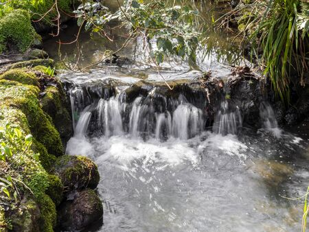 Small waterfall in a stream running through Peasholm Park, Scarborough, North Yorkshire, England