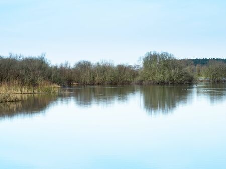 Reflections in the calm waters of the annually flooded wetlands at Wheldrake Ings, North Yorkshire, England