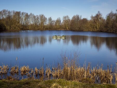 Lake at North Cave Wetlands Nature Reserve in East Yorkshire, England, with reflected trees in winter Stock Photo