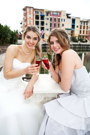 Two attractive young women are wearing formal attire and sitting on a dock sharing a drink. Vertical shot. Stock Photo - 7367997