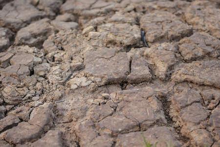 no water: arid ground fissure no water warming