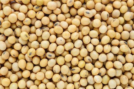 醤油豆植物の種子山野菜の健康食品、自然の背景