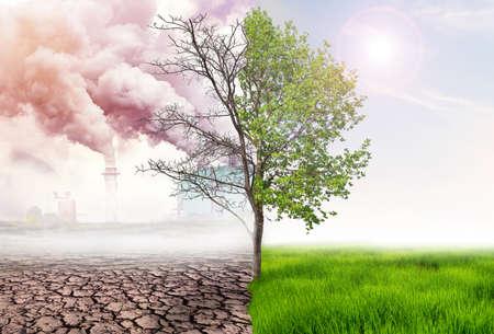 comparaison de la terre verte et de l'effet de la pollution atmosphérique due à l'action humaine, du concept de réchauffement climatique, de l'arbre vert et de la terre verte avec des terres claires et arides avec une pollution atmosphérique en arrière-plan