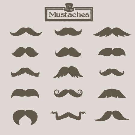 mustached: vintage mustache - vector illustration