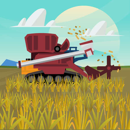 grain field: Rice combine harvester. farm - vector illustration Illustration