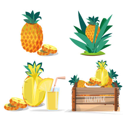 pineapple juice: set of pineapple. juice - vector illustration