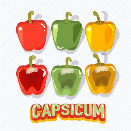 capsicum: capsicum fruit - vector illustration Illustration