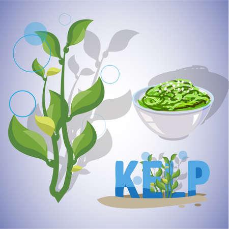 piatto: alghe kelp - illustrazione di vettore