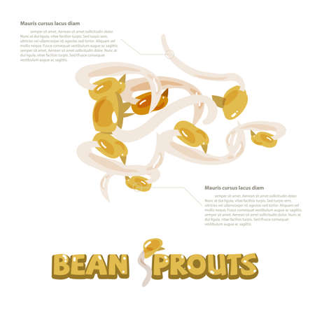 bean sprouts: bean sprouts with typographic design - vector illustration