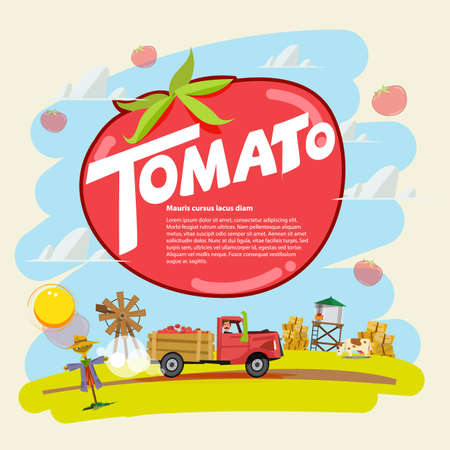 tomato concept. farm truck with tomato run across farm scence. farmer guy. Agricultural. presentation concept. typographic - vector illustration