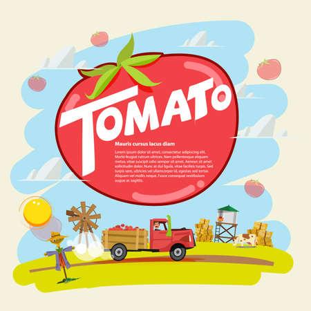 cartoon tractor: tomato concept. farm truck with tomato run across farm scence. farmer guy. Agricultural. presentation concept. typographic - vector illustration