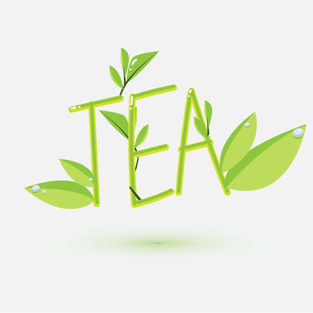 plant to drink: Tea text design. typographic - vector illustration